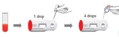 Heartworm Procedure Part1