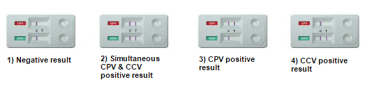 CPV/CCV Test Procedure 2